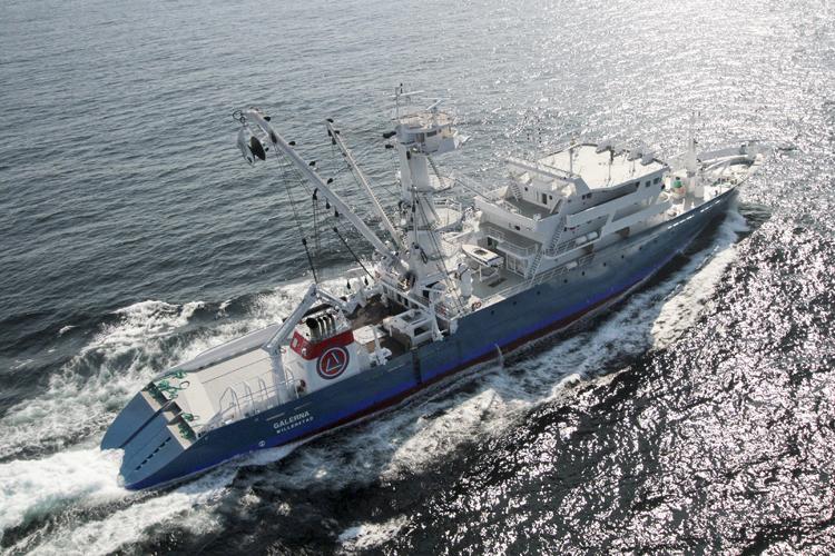 Cadena de valor del atún